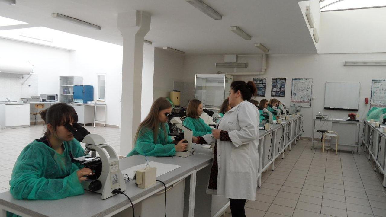 Warsztaty laboratoryjne z biologii i chemii na Wydziale
